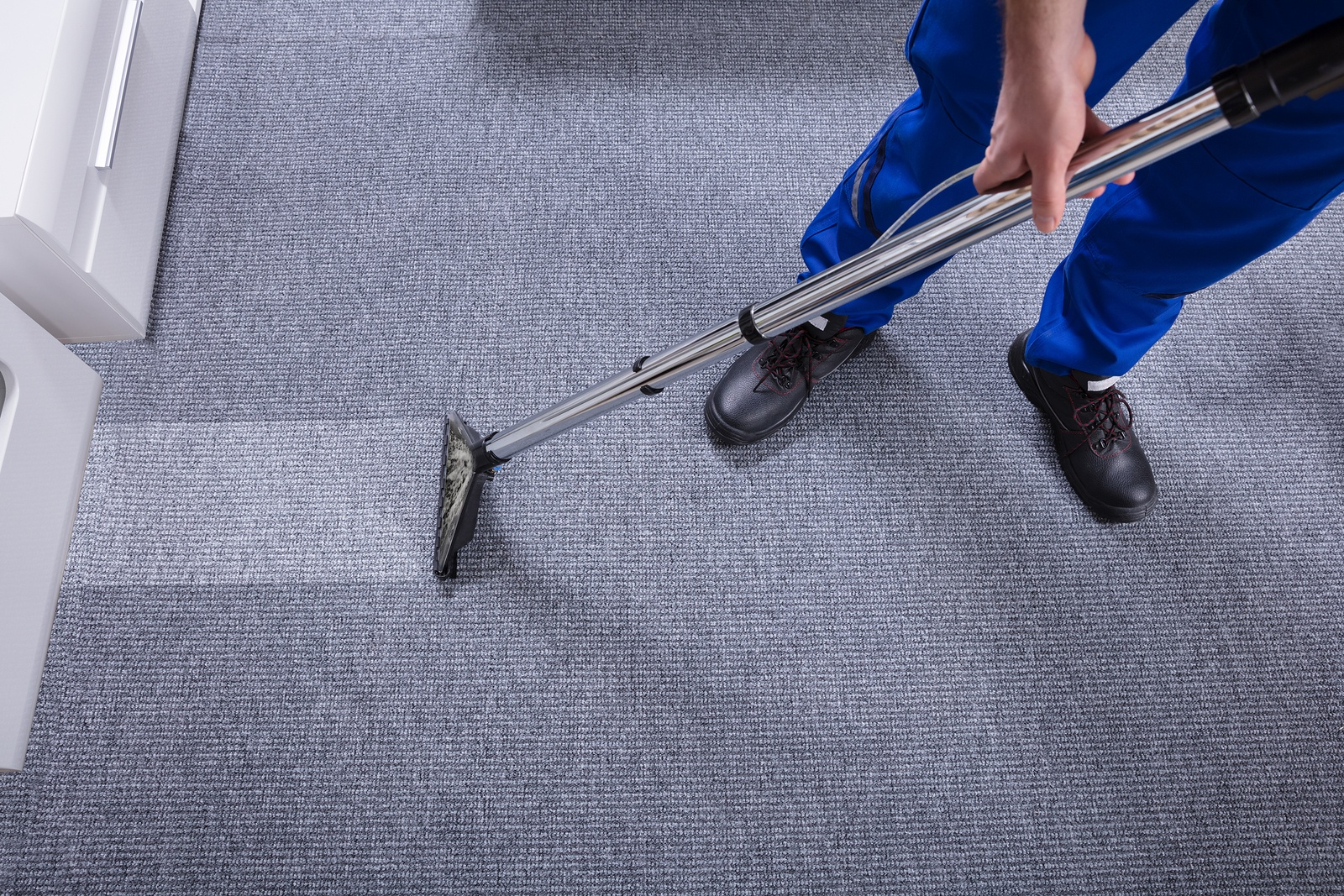 Choosing a Professional Carpet Cleaning Company